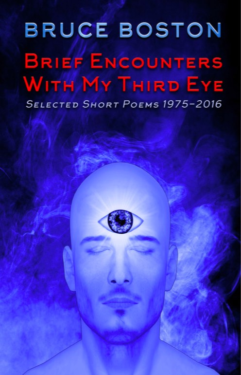 Brief Encounters with Third Eyes_Bruce Boston